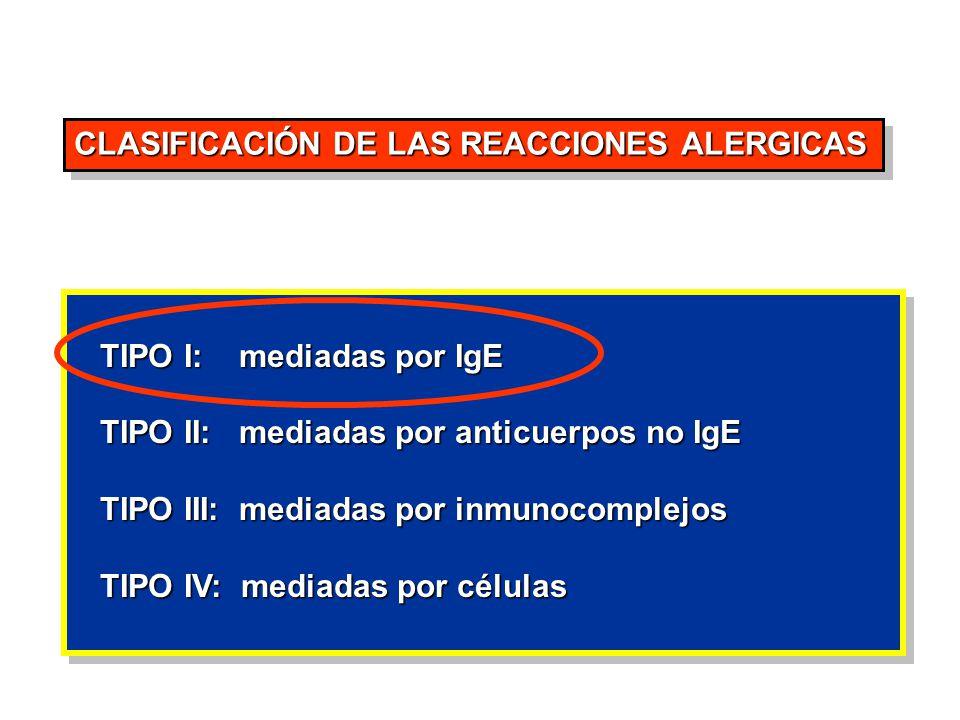 CLASIFICACIÓN DE LAS REACCIONES ALERGICAS TIPO I: mediadas por IgE TIPO I: mediadas por IgE TIPO II: mediadas por anticuerpos no IgE TIPO II: mediadas