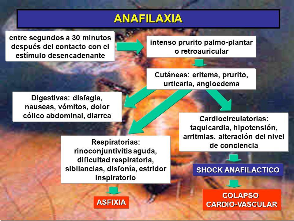 ANAFILAXIA entre segundos a 30 minutos después del contacto con el estímulo desencadenante intenso prurito palmo-plantar o retroauricular Cardiocircul