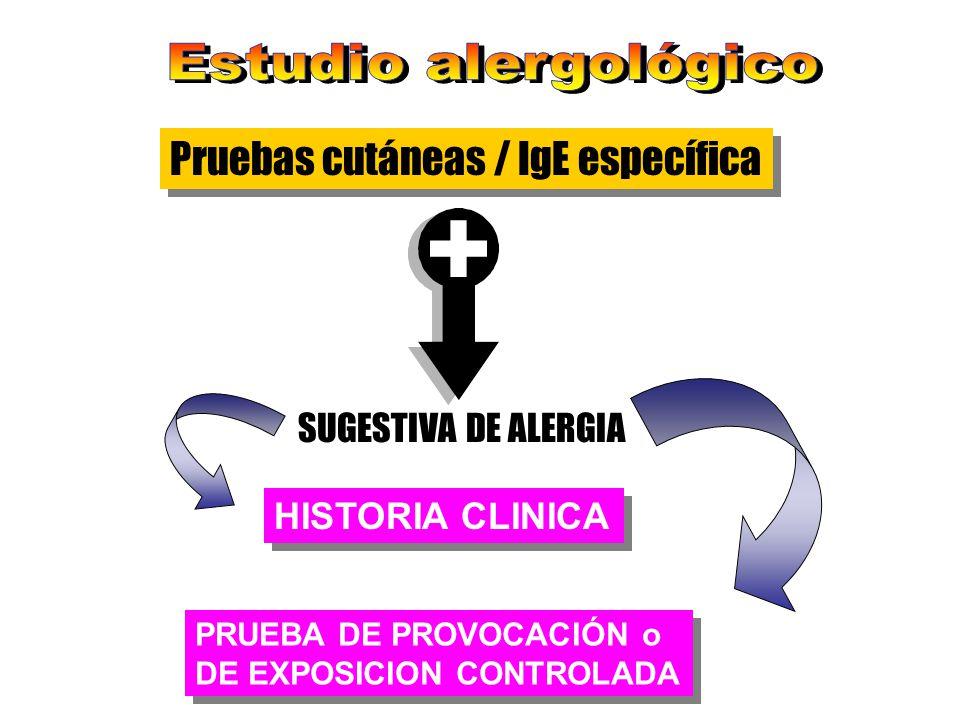 Pruebas cutáneas / IgE específica SUGESTIVA DE ALERGIA HISTORIA CLINICA PRUEBA DE PROVOCACIÓN o DE EXPOSICION CONTROLADA PRUEBA DE PROVOCACIÓN o DE EX