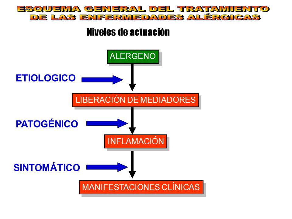 Niveles de actuación ALERGENO LIBERACIÓN DE MEDIADORES INFLAMACIÓN MANIFESTACIONES CLÍNICAS ETIOLOGICO PATOGÉNICO SINTOMÁTICO