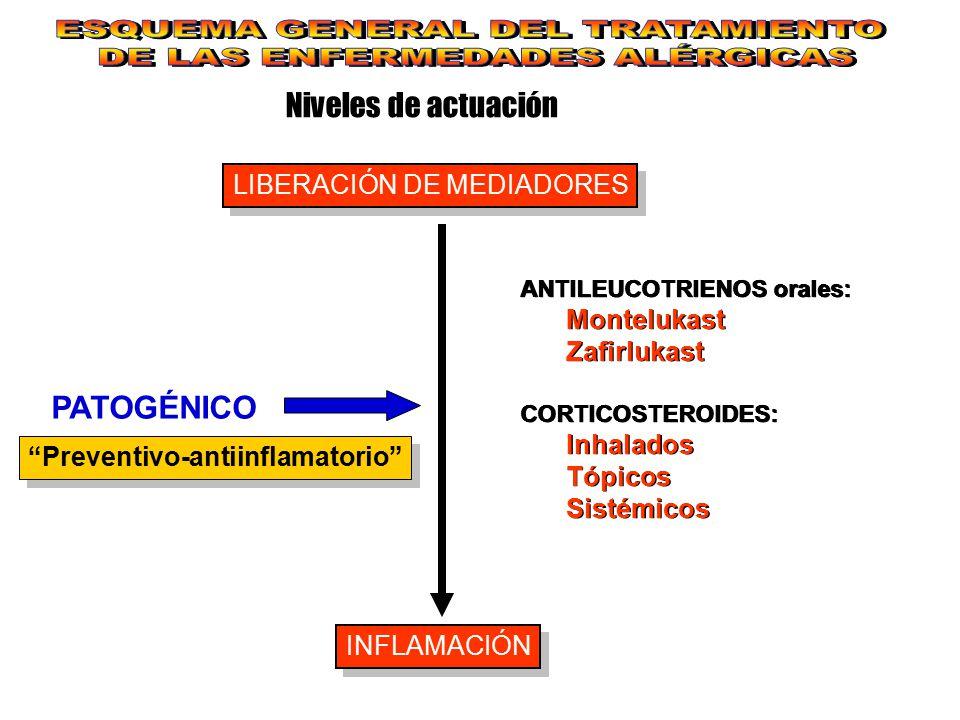 Niveles de actuación LIBERACIÓN DE MEDIADORES INFLAMACIÓN PATOGÉNICO ANTILEUCOTRIENOS orales: Montelukast Zafirlukast CORTICOSTEROIDES: Inhalados Tópi