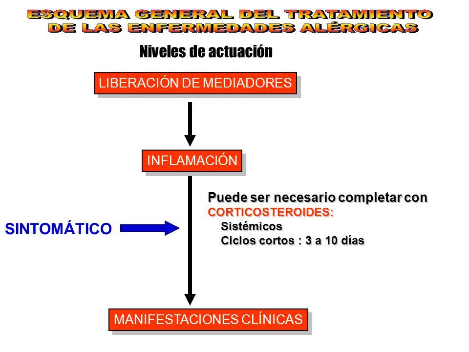 Niveles de actuación LIBERACIÓN DE MEDIADORES INFLAMACIÓN MANIFESTACIONES CLÍNICAS SINTOMÁTICO Para control sintomático de la rinitis, conjuntivitis,