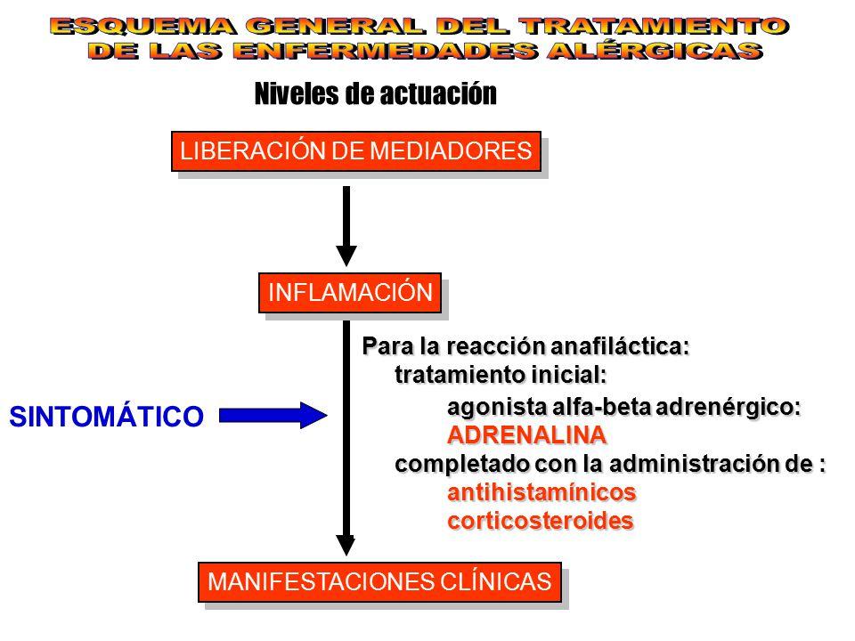 Niveles de actuación LIBERACIÓN DE MEDIADORES INFLAMACIÓN MANIFESTACIONES CLÍNICAS SINTOMÁTICO Para la reacción anafiláctica: tratamiento inicial: tra