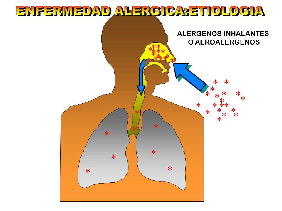 la inmunoterapia es el único tratamiento que puede cambiar el curso natural de las enfermedades alérgicas y puede prevenir el desarrollo de asma en pacientes con rinitis alérgica Documento de Posición.