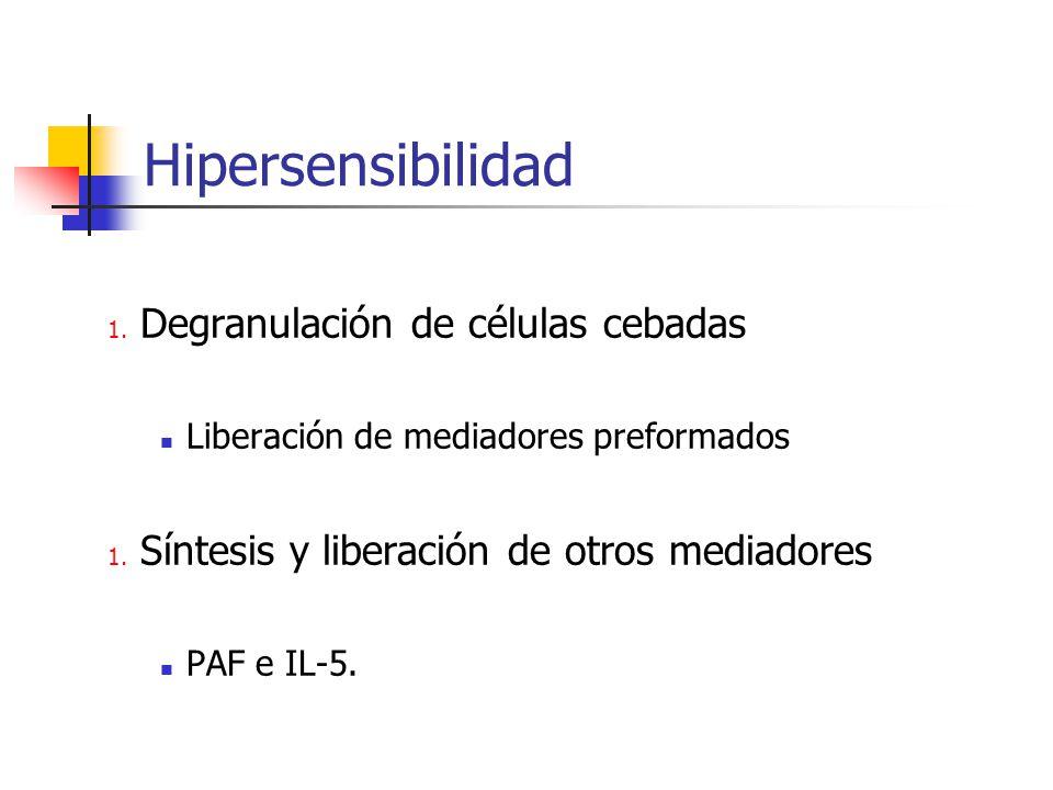Hipersensibilidad 1. Degranulación de células cebadas Liberación de mediadores preformados 1. Síntesis y liberación de otros mediadores PAF e IL-5.
