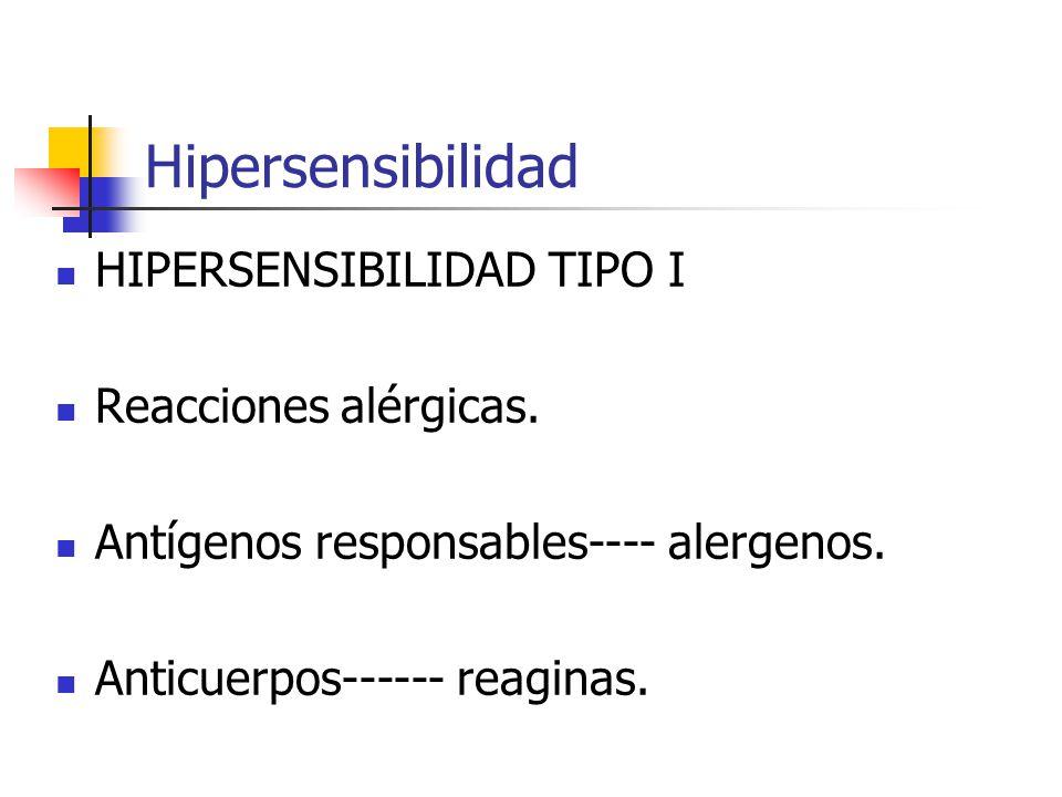 Hipersensibilidad HIPERSENSIBILIDAD TIPO I Reacciones alérgicas. Antígenos responsables---- alergenos. Anticuerpos------ reaginas.