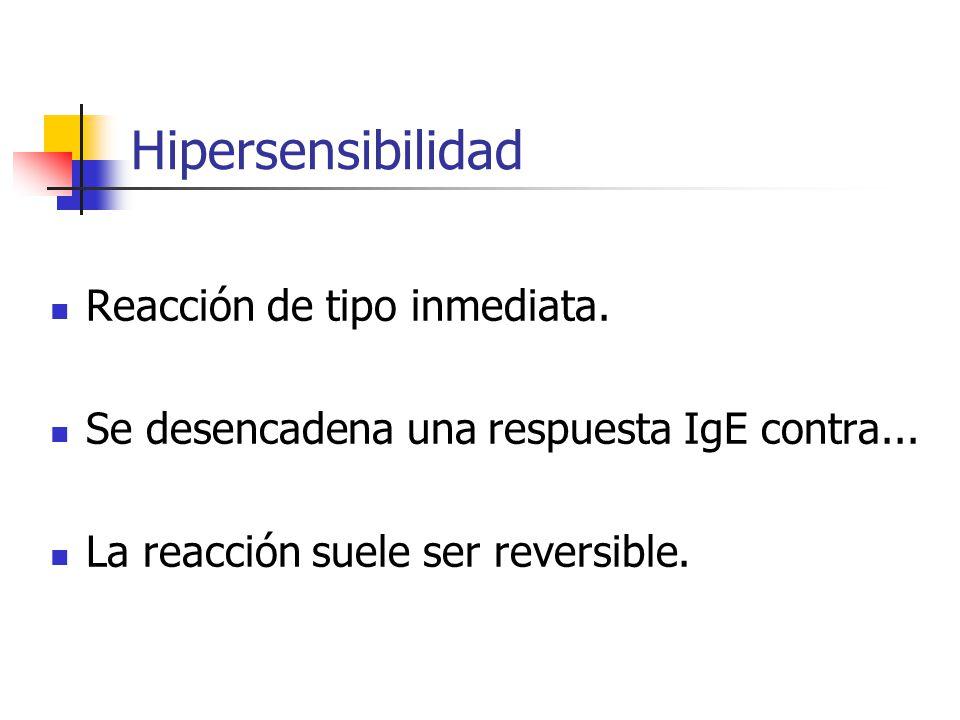 Hipersensibilidad Reacción de tipo inmediata. Se desencadena una respuesta IgE contra... La reacción suele ser reversible.