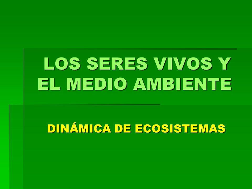 LOS SERES VIVOS Y EL MEDIO AMBIENTE DINÁMICA DE ECOSISTEMAS DINÁMICA DE ECOSISTEMAS