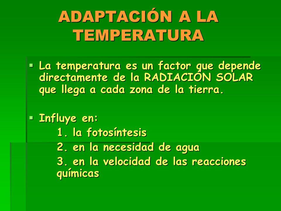 ADAPTACIÓN A LA TEMPERATURA  La temperatura es un factor que depende directamente de la RADIACIÓN SOLAR que llega a cada zona de la tierra.