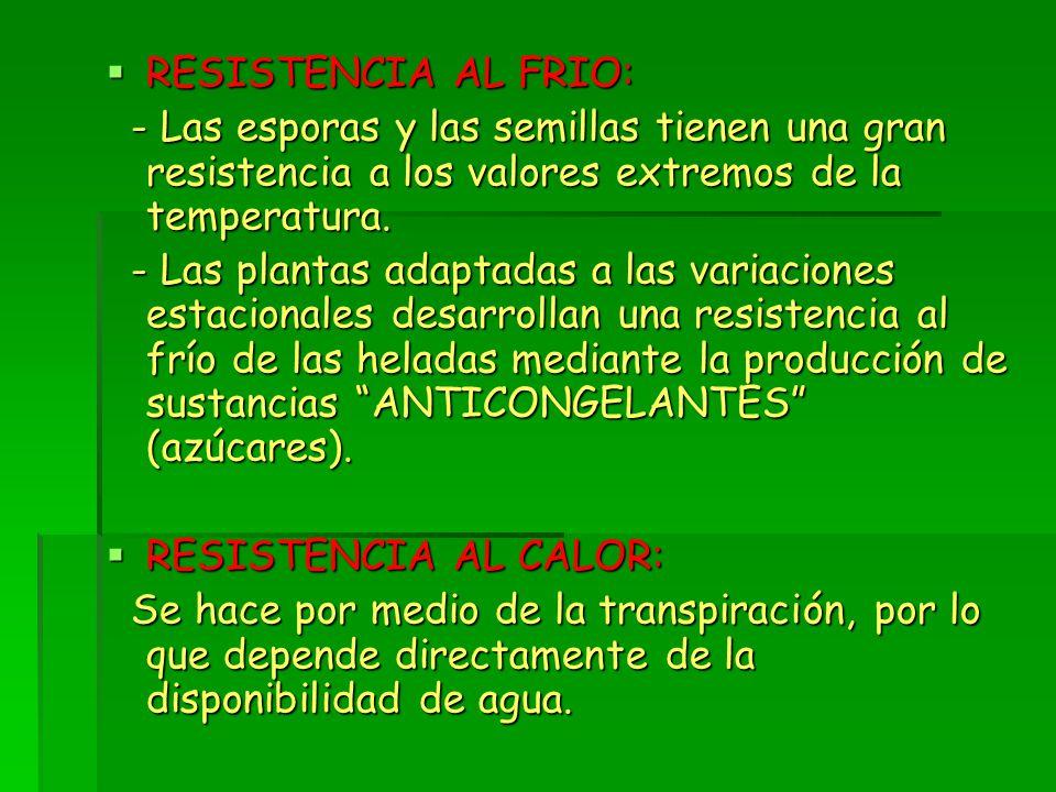  RESISTENCIA AL FRIO: - Las esporas y las semillas tienen una gran resistencia a los valores extremos de la temperatura.