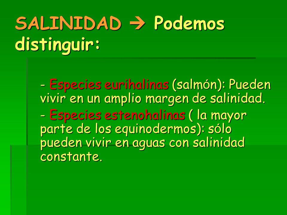 SALINIDAD  Podemos distinguir: - Especies eurihalinas (salm ó n): Pueden vivir en un amplio margen de salinidad.