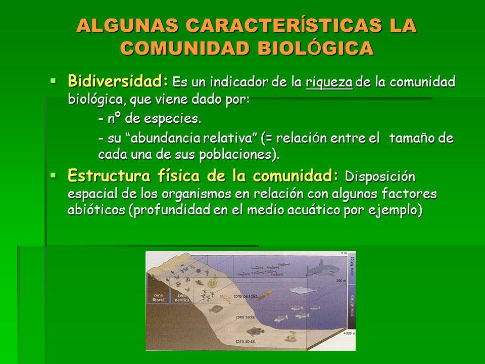 ALGUNAS CARACTER Í STICAS LA COMUNIDAD BIOL Ó GICA  Bidiversidad: Es un indicador de la riqueza de la comunidad biológica, que viene dado por: - nº de especies.