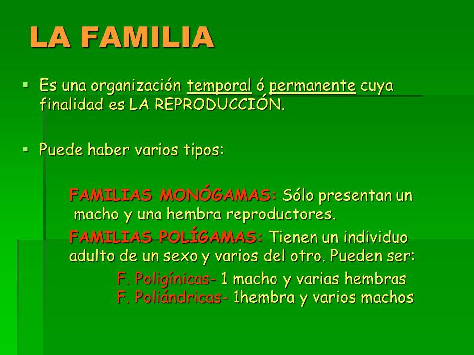 LA FAMILIA  Es una organización temporal ó permanente cuya finalidad es LA REPRODUCCIÓN.