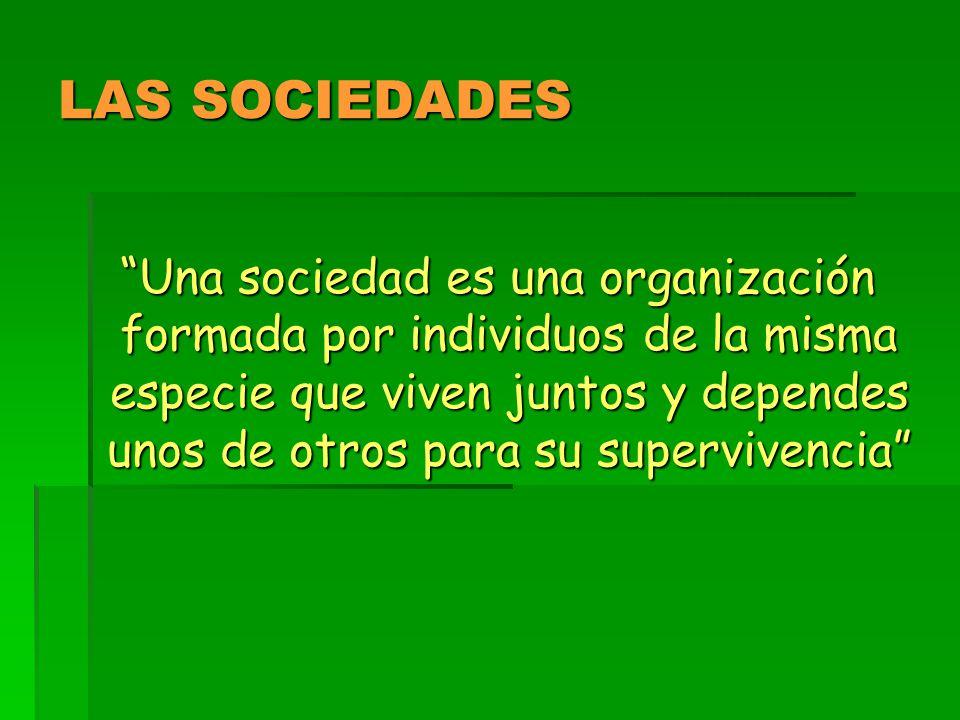 LAS SOCIEDADES Una sociedad es una organización formada por individuos de la misma especie que viven juntos y dependes unos de otros para su supervivencia Una sociedad es una organización formada por individuos de la misma especie que viven juntos y dependes unos de otros para su supervivencia