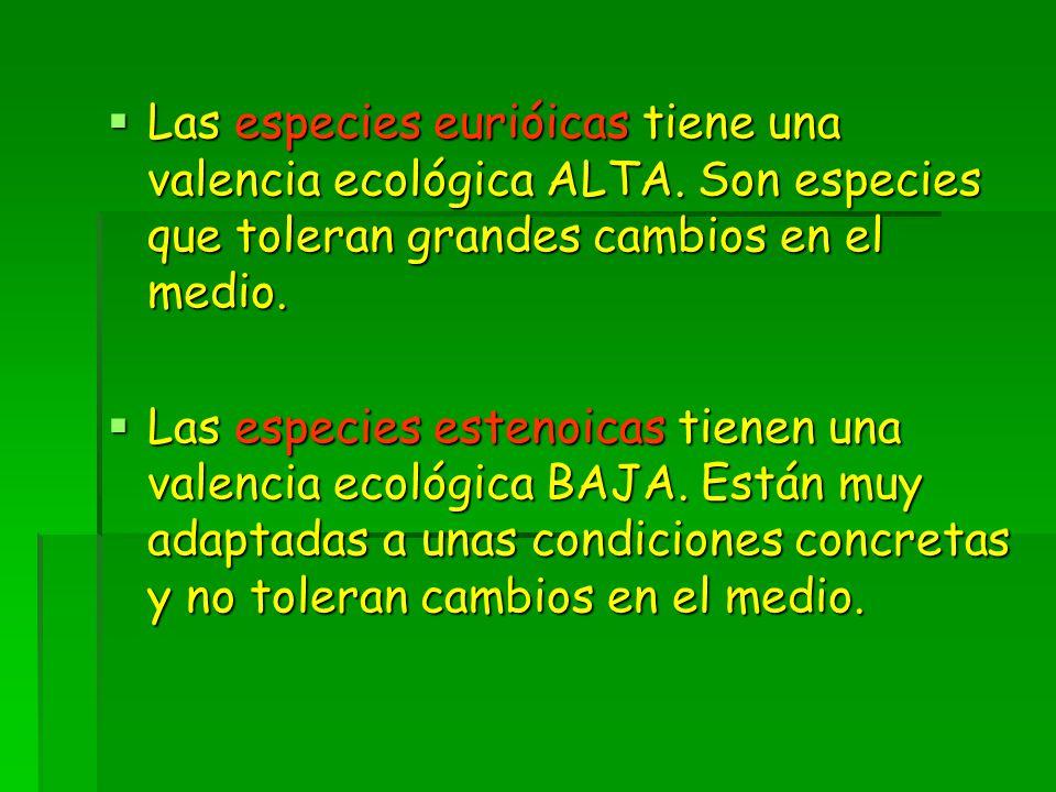  Las especies eurióicas tiene una valencia ecológica ALTA.