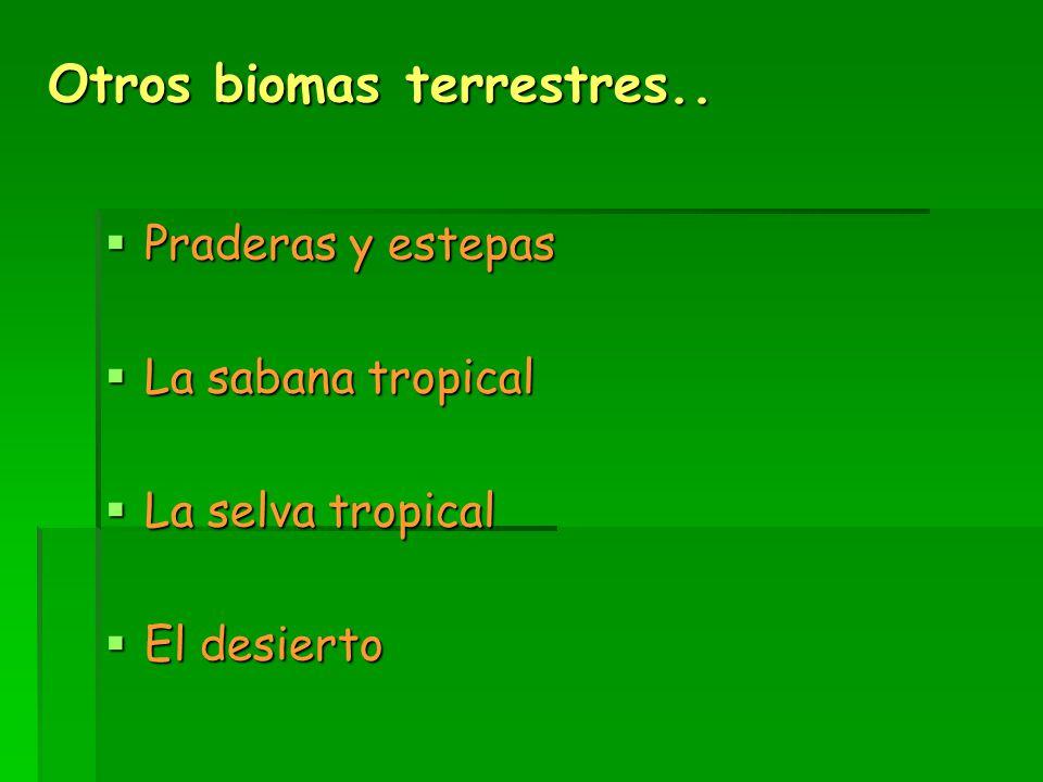  Praderas y estepas  La sabana tropical  La selva tropical  El desierto Otros biomas terrestres..