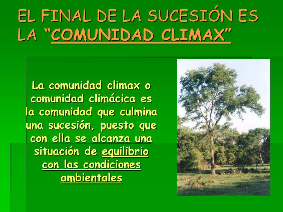 EL FINAL DE LA SUCESIÓN ES LA COMUNIDAD CLIMAX La comunidad climax o comunidad climácica es la comunidad que culmina una sucesión, puesto que con ella se alcanza una situación de equilibrio con las condiciones ambientales
