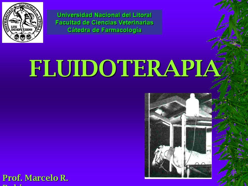 FLUIDOTERAPIA Universidad Nacional del Litoral Facultad de Ciencias Veterinarias Cátedra de Farmacología Prof.