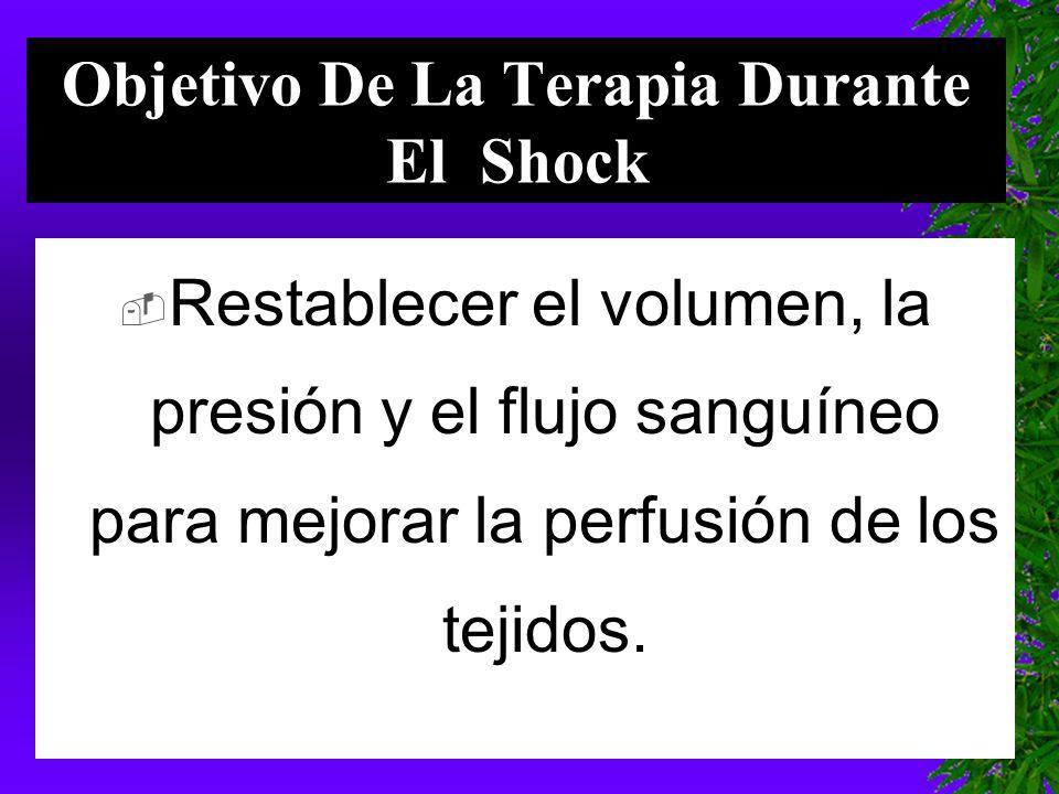 Objetivo De La Terapia Durante El Shock  Restablecer el volumen, la presión y el flujo sanguíneo para mejorar la perfusión de los tejidos.