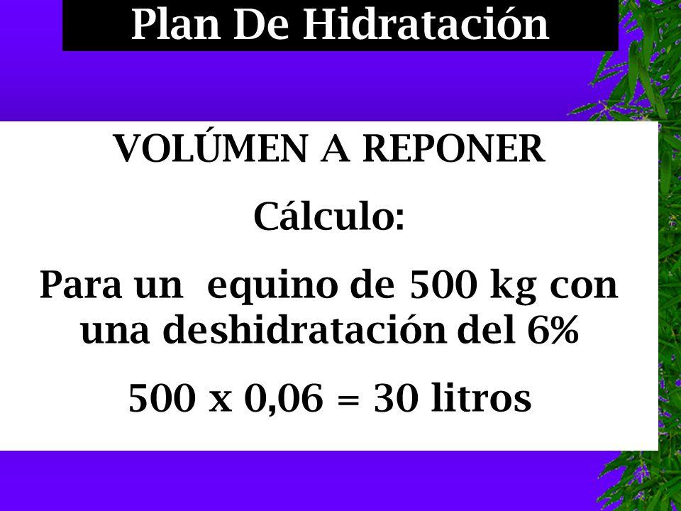 Plan De Hidratación VOLÚMEN A REPONER Cálculo: Para un equino de 500 kg con una deshidratación del 6% 500 x 0,06 = 30 litros