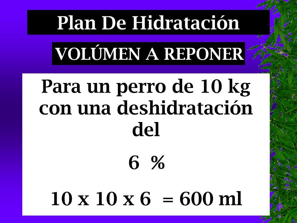 Para un perro de 10 kg con una deshidratación del 6 % 10 x 10 x 6 = 600 ml Plan De Hidratación VOLÚMEN A REPONER