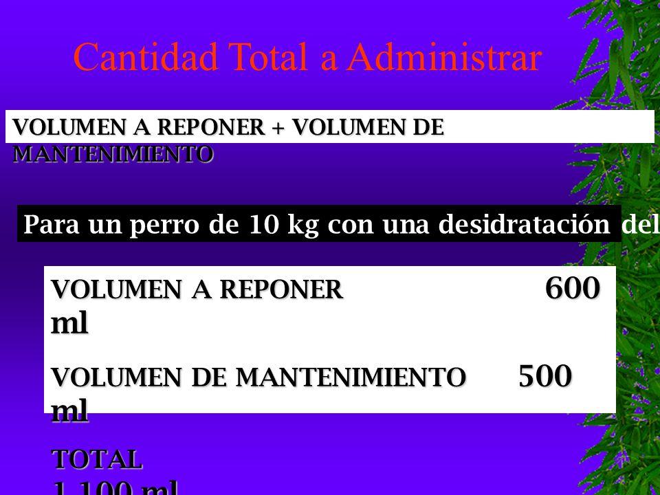 VOLUMEN A REPONER 600 ml VOLUMEN DE MANTENIMIENTO 500 ml TOTAL 1.100 ml VOLUMEN A REPONER + VOLUMEN DE MANTENIMIENTO Para un perro de 10 kg con una desidratación del 6 % Cantidad Total a Administrar