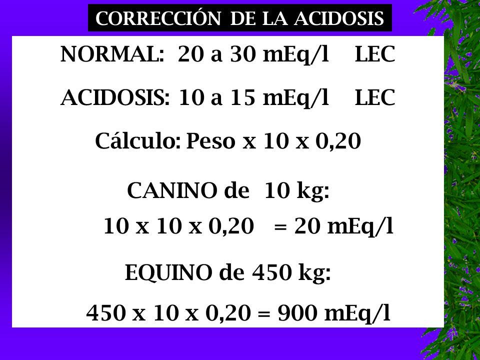 CORRECCIÓN DE LA ACIDOSIS NORMAL: 20 a 30 mEq/l LEC ACIDOSIS: 10 a 15 mEq/l LEC Cálculo: Peso x 10 x 0,20 CANINO de 10 kg: 10 x 10 x 0,20 = 20 mEq/l EQUINO de 450 kg: 450 x 10 x 0,20 = 900 mEq/l