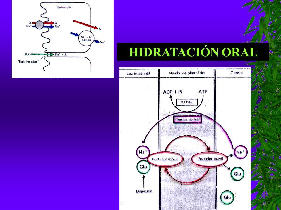 HIDRATACIÓN ORAL