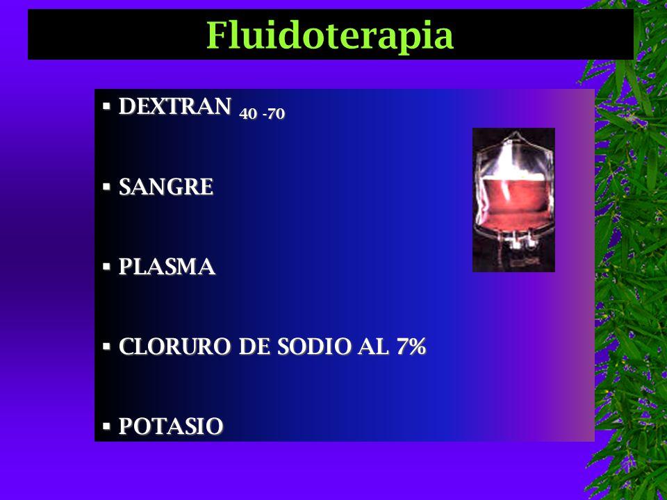  DEXTRAN 40 -70  SANGRE  PLASMA  CLORURO DE SODIO AL 7%  POTASIO Fluidoterapia