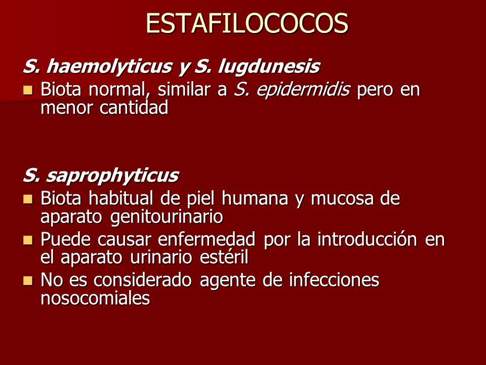 ESTAFILOCOCOS S.haemolyticus y S. lugdunesis Biota normal, similar a S.