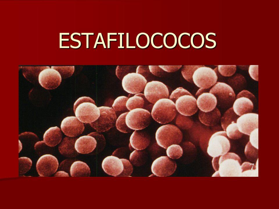 Estafilococos :Factores de virulencia presentes en S.