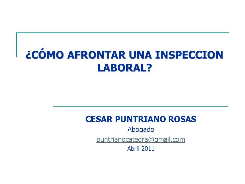 ley de inspeccion laboral: