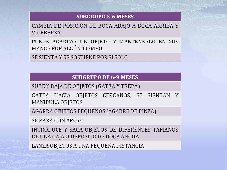 SUBGRUPO 3-6 MESES CAMBIA DE POSICIÓN DE BOCA ABAJO A BOCA ARRIBA Y VICEBERSA PUEDE AGARRAR UN OBJETO Y MANTENERLO EN SUS MANOS POR ALGÚN TIEMPO. SE S