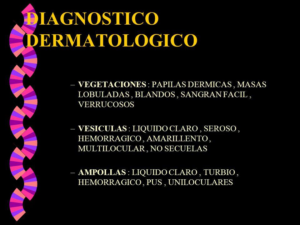 DIAGNOSTICO DERMATOLOGICO –VEGETACIONES : PAPILAS DERMICAS, MASAS LOBULADAS, BLANDOS, SANGRAN FACIL, VERRUCOSOS –VESICULAS : LIQUIDO CLARO, SEROSO, HE