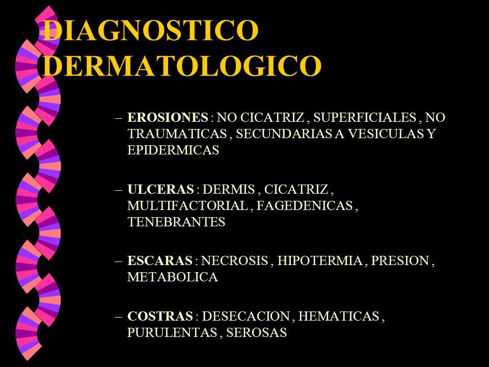 DIAGNOSTICO DERMATOLOGICO –EROSIONES : NO CICATRIZ, SUPERFICIALES, NO TRAUMATICAS, SECUNDARIAS A VESICULAS Y EPIDERMICAS –ULCERAS : DERMIS, CICATRIZ,