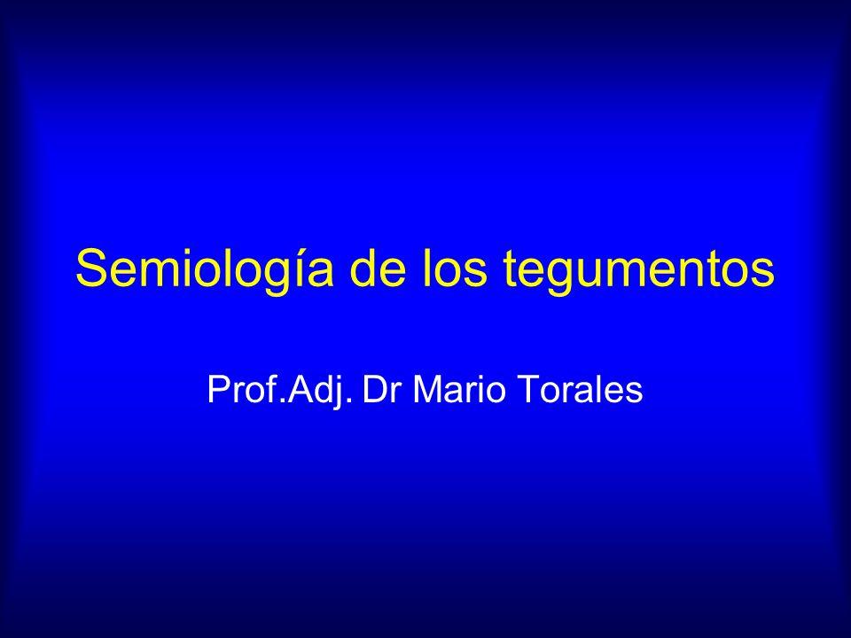 Semiología de los tegumentos Prof.Adj. Dr Mario Torales