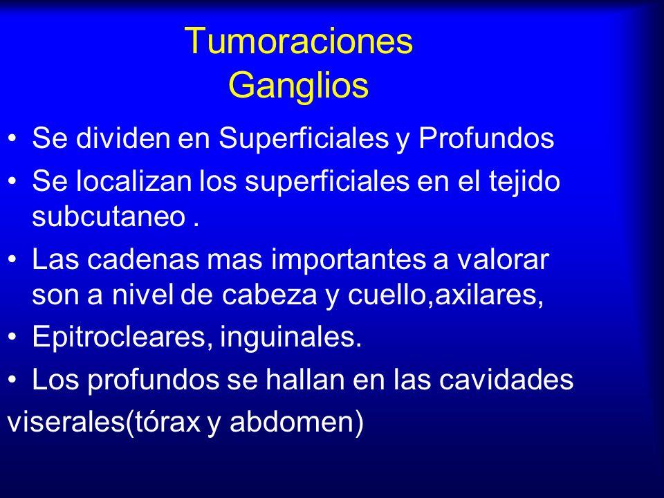 Tumoraciones Ganglios Se dividen en Superficiales y Profundos Se localizan los superficiales en el tejido subcutaneo. Las cadenas mas importantes a va