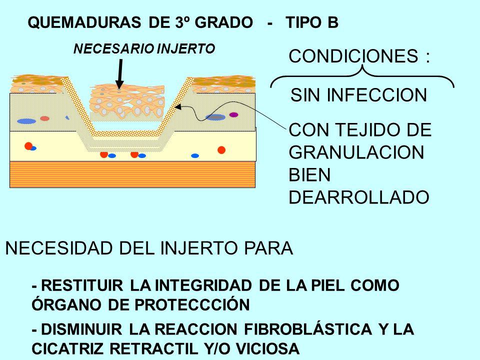 NECESIDAD DEL INJERTO PARA - RESTITUIR LA INTEGRIDAD DE LA PIEL COMO ÓRGANO DE PROTECCCIÓN - DISMINUIR LA REACCION FIBROBLÁSTICA Y LA CICATRIZ RETRACTIL Y/O VICIOSA SIN INFECCION CON TEJIDO DE GRANULACION BIEN DEARROLLADO NECESARIO INJERTO CONDICIONES :