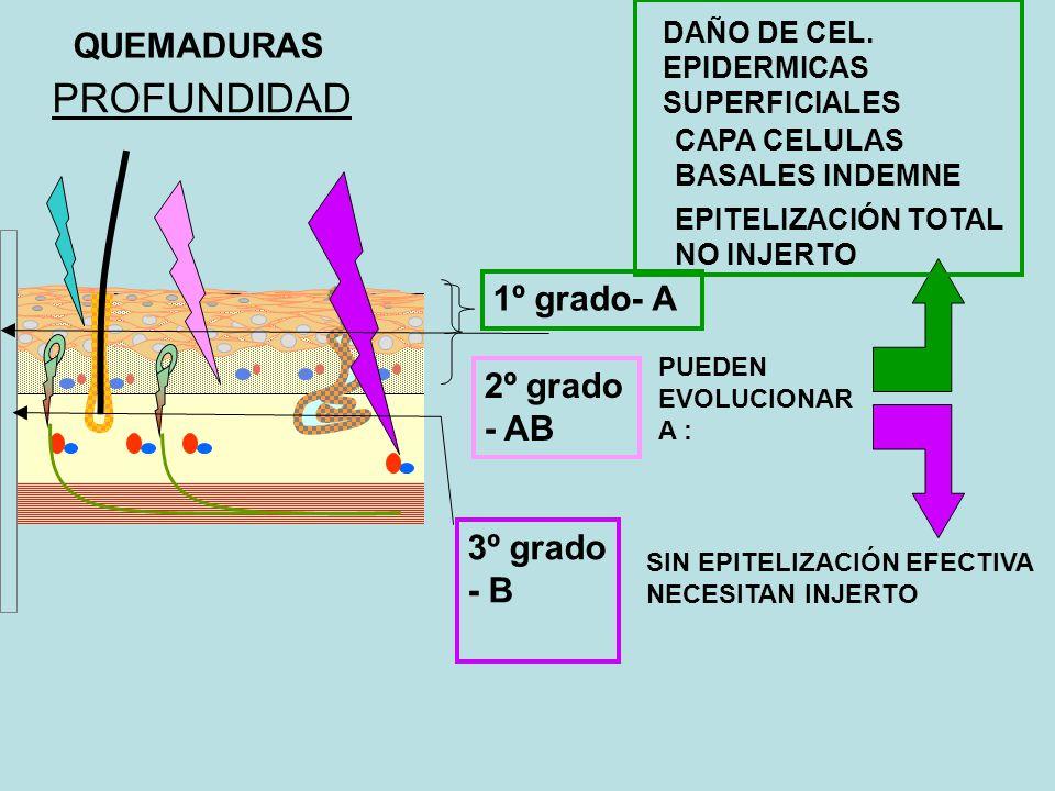 Quemaduras Eléctricas Herida de Entrada: La alta resistencia de la piel transforma energía eléctrica a calor, lo cual produce quemaduras alrededor del punto de entrada (punto oscuro en el al centro de la herida).