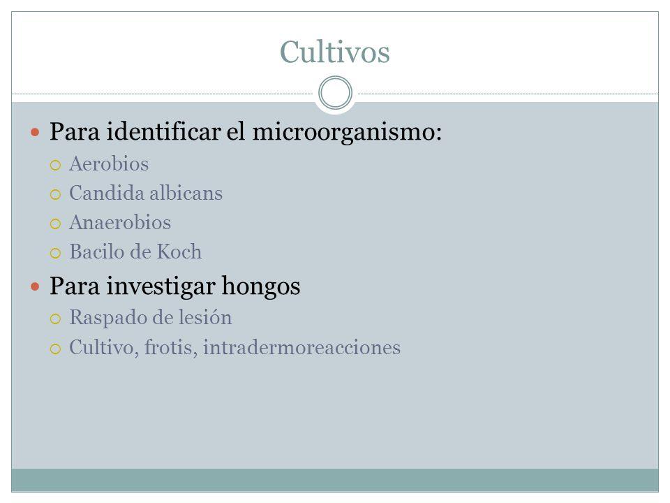 Cultivos Para identificar el microorganismo:  Aerobios  Candida albicans  Anaerobios  Bacilo de Koch Para investigar hongos  Raspado de lesión  Cultivo, frotis, intradermoreacciones