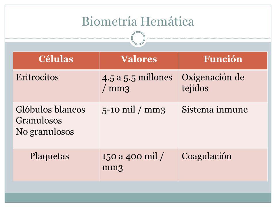 Biometría Hemática CélulasValoresFunción Eritrocitos4.5 a 5.5 millones / mm3 Oxigenación de tejidos Glóbulos blancos Granulosos No granulosos 5-10 mil / mm3Sistema inmune Plaquetas150 a 400 mil / mm3 Coagulación
