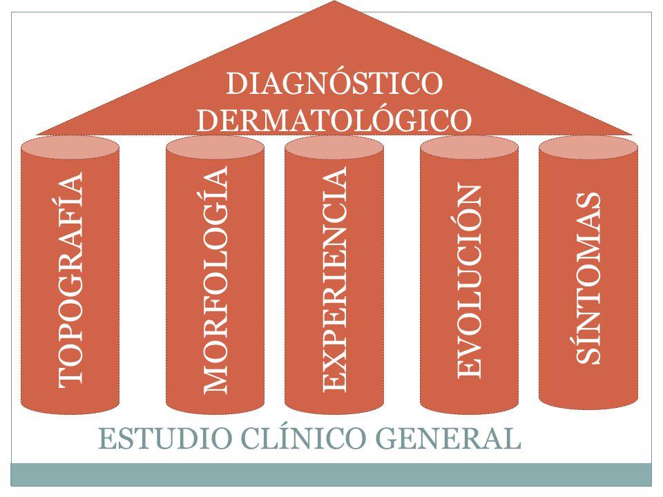 ESTUDIO CLÍNICO GENERAL TOPOGRAFÍA MORFOLOGÍA EXPERIENCIA EVOLUCIÓN SÍNTOMAS DIAGNÓSTICO DERMATOLÓGICO