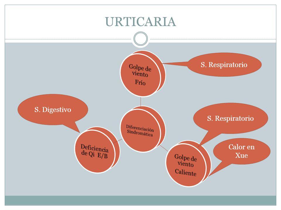 URTICARIA S. Respiratorio S. Digestivo Calor en Xue