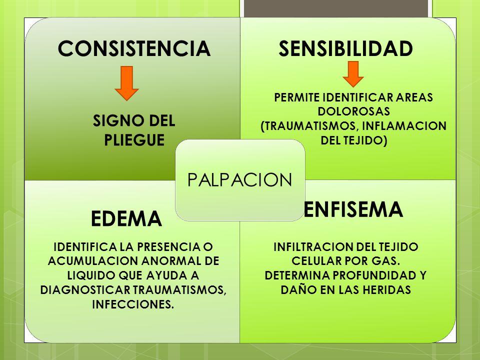 PALPACION CONSISTENCIA SIGNO DEL PLIEGUE SENSIBILIDAD PERMITE IDENTIFICAR AREAS DOLOROSAS (TRAUMATISMOS, INFLAMACION DEL TEJIDO) EDEMA IDENTIFICA LA PRESENCIA O ACUMULACION ANORMAL DE LIQUIDO QUE AYUDA A DIAGNOSTICAR TRAUMATISMOS, INFECCIONES.
