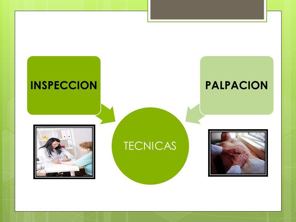 TECNICAS INSPECCIONPALPACION