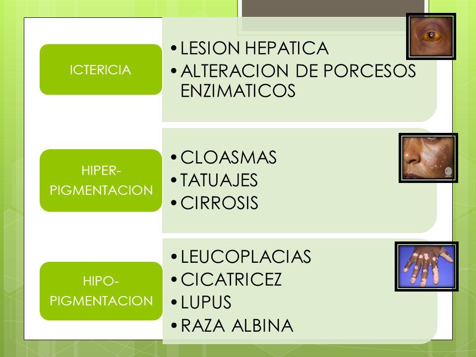 MACULASAMPOLLA S VESICULAS HABONES (RONCHAS) PAPULAS
