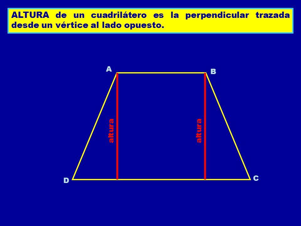 ALTURA de un cuadrilátero es la perpendicular trazada desde un vértice al lado opuesto. A B C D altura