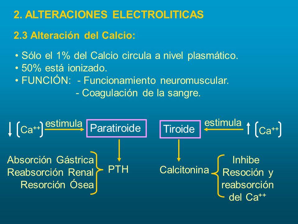 Sólo el 1% del Calcio circula a nivel plasmático. 50% está ionizado. FUNCIÓN: - Funcionamiento neuromuscular. - Coagulación de la sangre. Ca ++ estimu