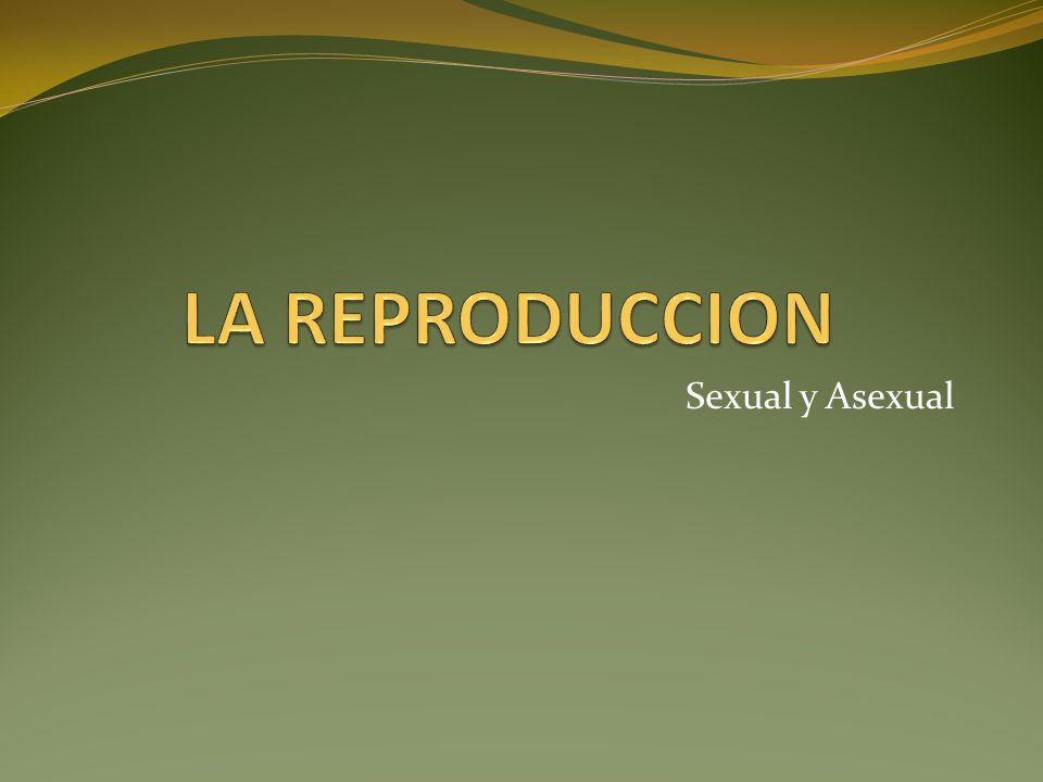 Sexual y Asexual