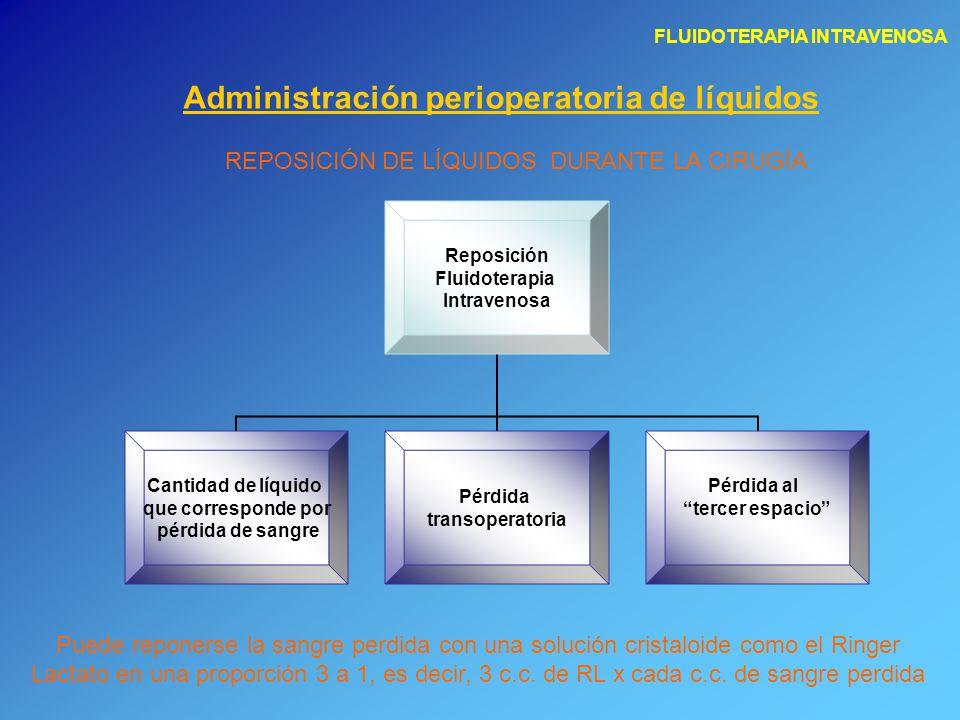 FLUIDOTERAPIA INTRAVENOSA Administración perioperatoria de líquidos REPOSICIÓN DE LÍQUIDOS DURANTE LA CIRUGÍA Reposición Fluidoterapia Intravenosa Can